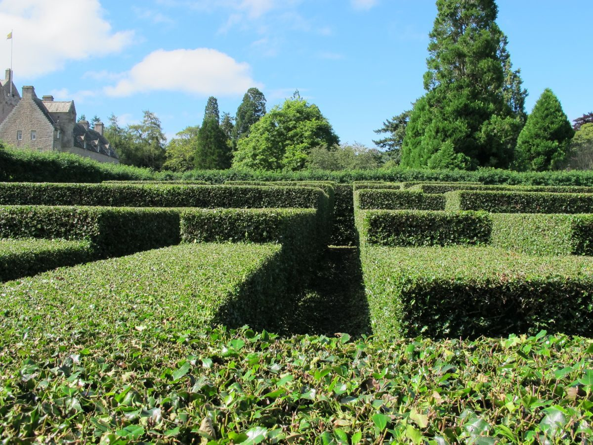 Pgds 20141010 144700 Cawdor Castle Holly Maze